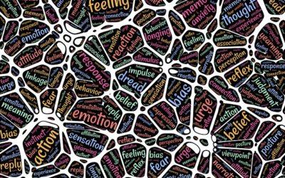 Mindfulness y neurociencia: nuevos caminos por descubrir