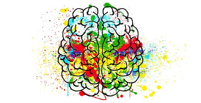 Mindfulness: nuestra asimetría prefrontal y la disposición afectiva.