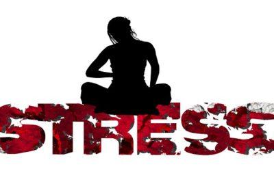 Centro Mindfulness Madrid, reducir el estrés. Libro: ¿Por qué las cebras no tienen úlcera?