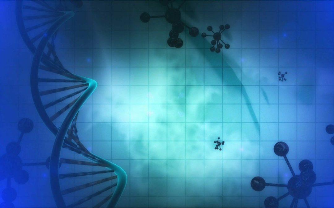 ¿Cuáles son las modificaciones que produce el Mindfulness a nivel epigenético?