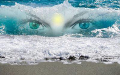 ¿Cuál es el efecto de los retiros de Mindfulness?